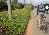 Ciclovia Marginal Pinheiros - Canteiro florido
