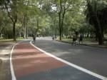 Em pontos com fluxo de pedestres, como nessa pequena travessa que leva a uma das saídas do parque, o pavimento é na cor vermelha, para que os ciclistas tomem cuidado com as pessoas que precisam atravessar a ciclovia.