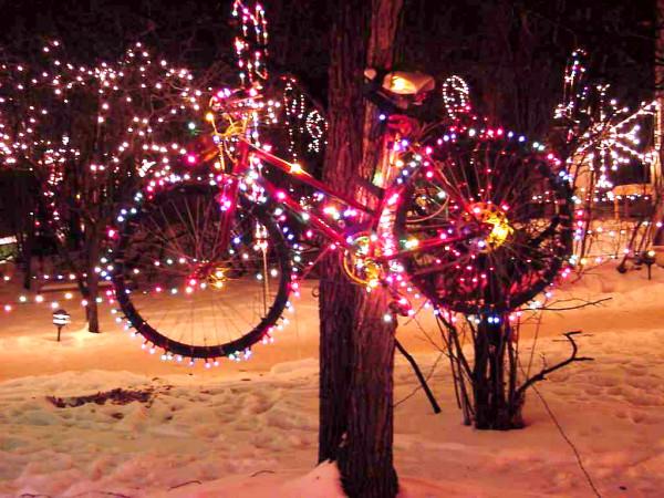 Bicicleta luzes pendurada em uma árvore (autor desconhecido)