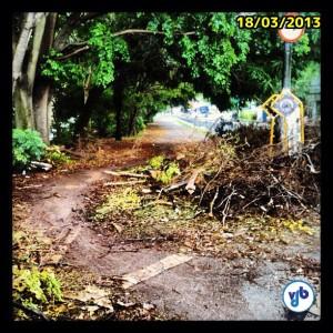 Dez dias depois, os restos de árvore continuam obstruindo a ciclovia. Perceba que os ciclistas, que passam frequentemente no local, retiraram os galhos maiores, mas já adotaram a alternativa de passar sobre o canteiro. Isso é comum em trilhas, não na cidade. Foto: Rachel Schein