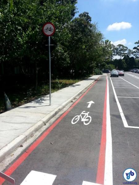 Ciclofaixa em sentido oposto ao fluxo de carros pode solucionar conflitos com ciclistas na contramão - em situações e locais muito específicos.