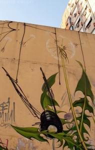 Sua obra está nos muros de Porto Alegre. Foto: Arquivo Pessoal