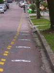 """O """"crime ambiental"""" cometido em Curitiba. Foto: Bicicletada Curitiba"""