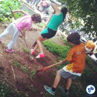 Crianças na Horta do Ciclista. Foto: Rachel Schein