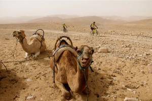 Em alguns anos, a pedalada acontece no deserto. Foto: Divulgação