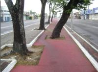 Pista de slalom? Não, apenas mais uma ciclovia em Fortaleza. Foto: Ciclovida/Divulgação