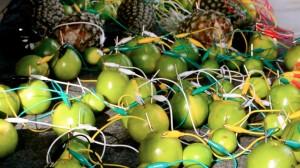 """Instalação """"Fruta faz música"""" permitia que público tirasse som de frutas ligadas a um emaranhado de fios. Foto: Rachel Schein"""