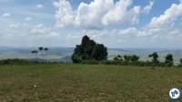A vista do alto da Serra. Foto: Willian Cruz