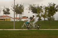 bicicleta de roda oval imagem reproducao