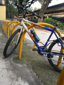 No segundo dia de bike ao trabalho, Carolina parou no Parque da Água Branca para um café da manhã orgânico. A bicicleta amplia seus caminhos, descortina possibilidades e te liberta da rotina. Foto: arquivo pessoal