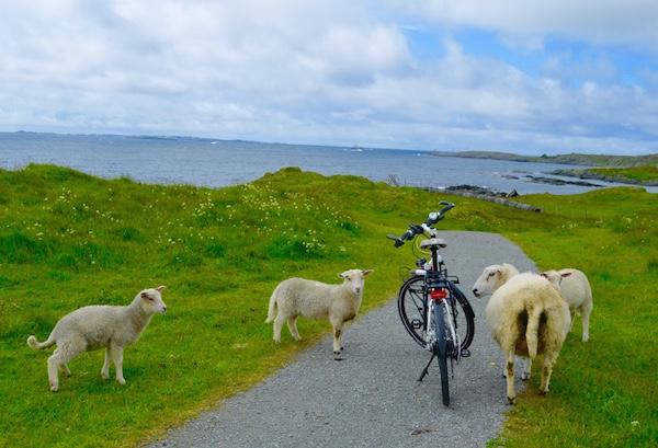 Cenário encontrado em Haugesund, Noruega, pela colunista do Vá de Bike Raquel Jorge. Foto: Arquivo pessoal