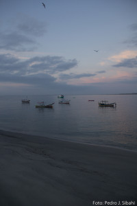 Vila de pescadores de Superagui. Foto: Pedro Sibahi