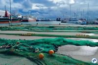 Skagen 2 - Foto: Raquel Jorge