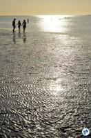 Alemanha - To Cuxhaven9 - Foto Raquel Jorge