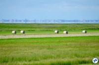 Alemanha - To Wilhelmshaven2 - Foto Raquel Jorge