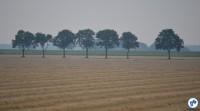 Holanda To Delfzjil 4 - Foto Raquel Jorge