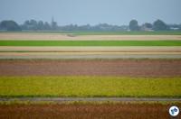 Holanda To Harlingen 5 - Foto Raquel Jorge