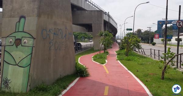 Nesse outro exemplo, também em São Paulo, traçado da ciclovia preservou até as menores árvores. Foto: Willian Cruz