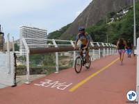Ciclovia Tim Maia - Av Niemeyer IMG_4509 - Foto Fabio Nazareth