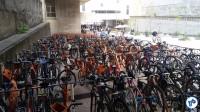 Bicicultura - 2016-05-28