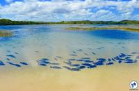 Cicloturismo de Alagoas ate a Bahia 050 - Foto Raquel Jorge