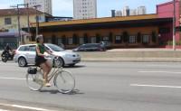 Márcia Fernog - São Paulo/SP