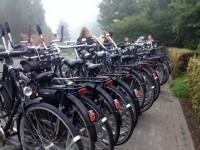 Bicycle Showband Crescendo 12 - Foto Divulgacao